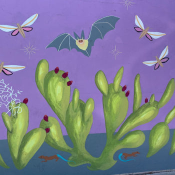 mural of bats and prickly pear