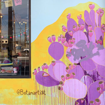 mural of sunset prickly pear