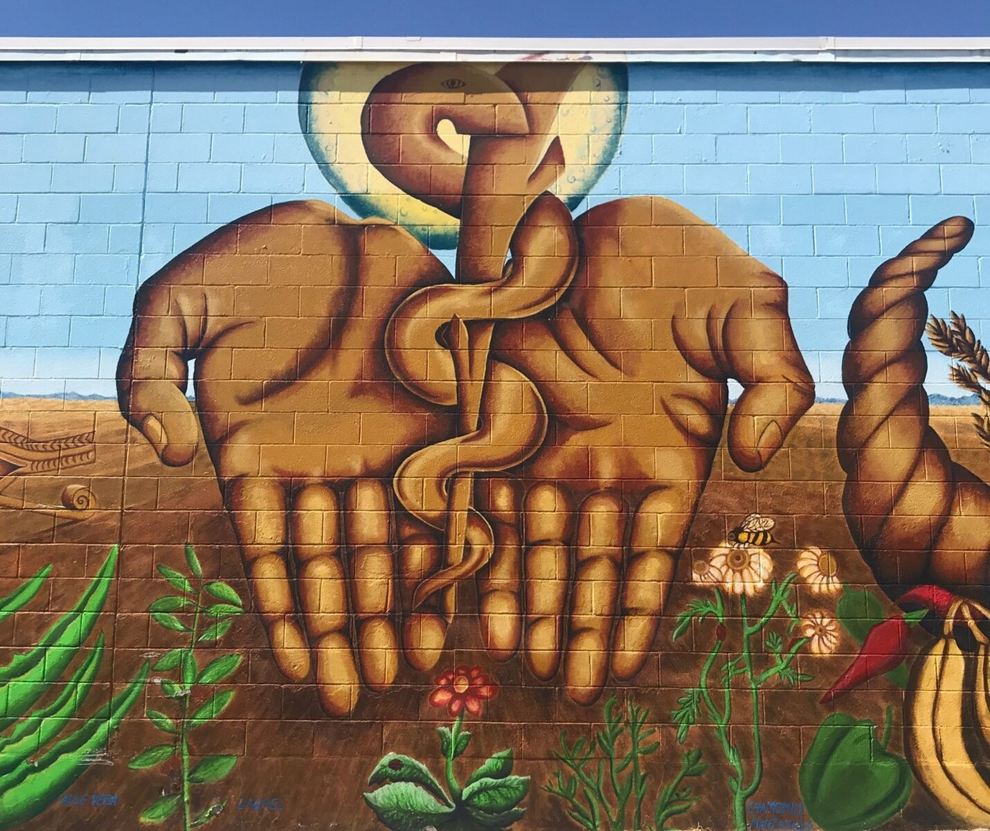 Healing Hands and Rod of Asclepius in desert landscape